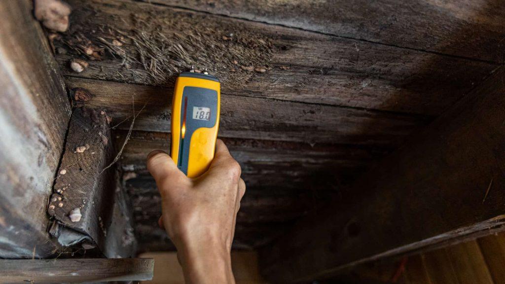 log home inspection